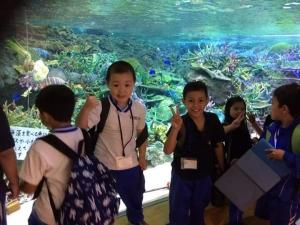名古屋港水族館見学 Passeio no aquário de Nagoya